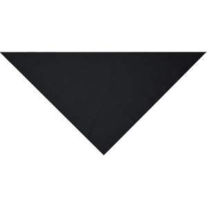 Bandana triangle.