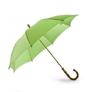 Parapluie 100 % Green